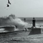 Sea storm...
