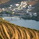 Tonalidades do Douro