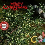 Feliz Natal companheiros
