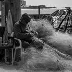 Amanhar as redes ( Pescador )