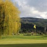 Golf vidago