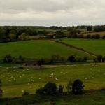 Viver no campo