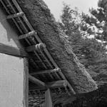 Um senhor telhado