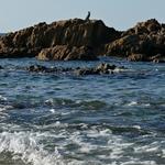 Há que proteger os oceanos