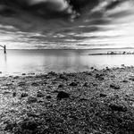 Destroços de maré cheia