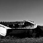 O barco e o SONHO .