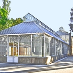 Estufas Botanico Coimbra