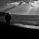 O adeus do homem solitário à gaivota cósmica