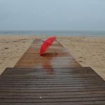 Red umbrella...