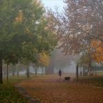 passeio pelo parque