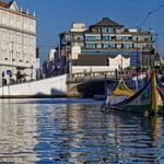 Passeando na ria de Aveiro