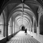 Abadia de Fontevraud