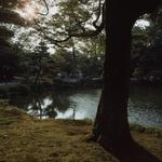 Recantos do jardim Kenrokuen