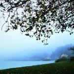 Numa manhã de um Outono de sonho .