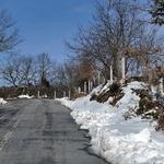A neve que precisamos