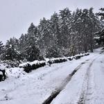 Mais uma nevada_02