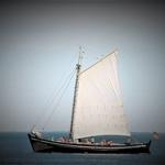 Barco á Vela.