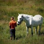 A Menina e o Cavalo.