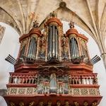 Orgão _ igreja de Santa Cruz _ Coimbra