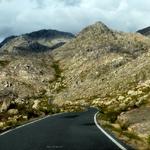 El camino___
