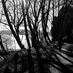 Caminhando junto ao Douro...