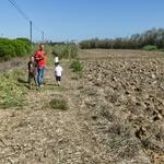 Saudade das caminhadas com filho e netos