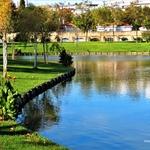 Lago do Parque.