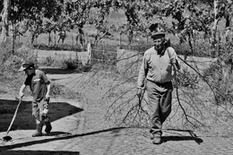 O avô e o neto