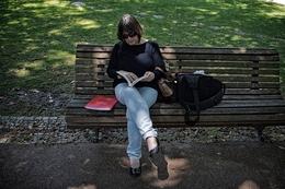 A leitora no jardim